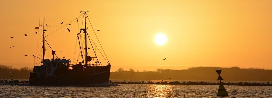 barco-pesca